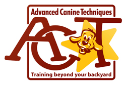 Advanced Canine Techniques
