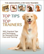 Top Tips for Top Trainers